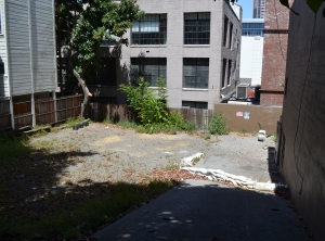 Before photo of Guy Place Mini Park.