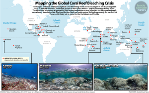 """Mapping the coral reef crisis."" Please credit The Ocean Agency / XL Catlin Seaview Survey."